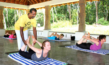 Dukes Forest Lodge Yoga und Meditation