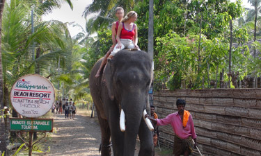 Kadappuram Elefantenritt
