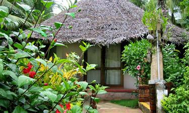 Nikkis Nest Cottages
