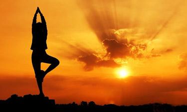 Meiveda Kerala Yoga