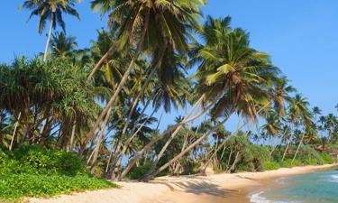 Sri Lanka Reisen 2018