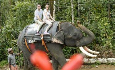 Erfahrungsbericht Gecco-Tours Flitterwochen Kerala